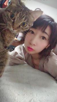 こんばんわ!✨の写真