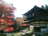 京都🍂🍁の写真