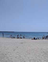 海!!!の写真