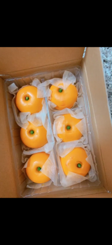 みかん饅頭🍊✨の写真