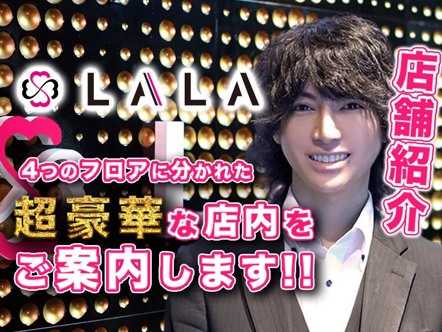 歌舞伎町ホストクラブ「LALA」豪華店内をご紹介!!のアイキャッチ画像