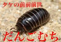 タケ35回忌☆前夜祭SPECIAL割引!!!写真1