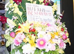 歌舞伎町alphaのイベント「最強の愛されキャラ!?☆~魅月幻音 幹部補佐昇格祭~」の様子